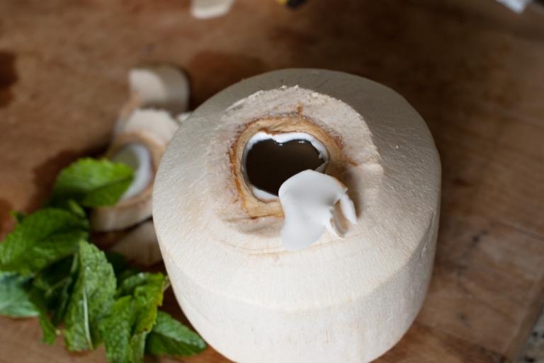 open-coconut